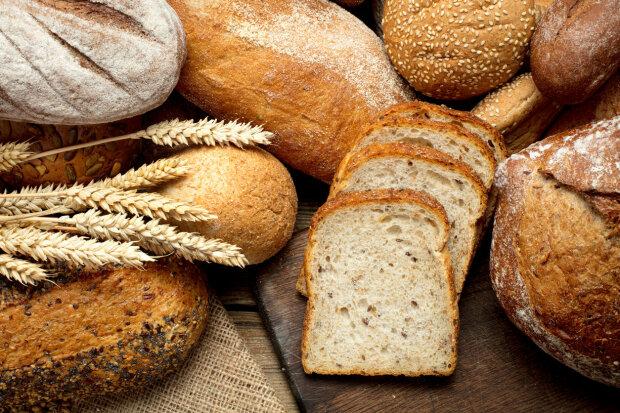 В Украине подорожали хлеб и бензин — Госстат