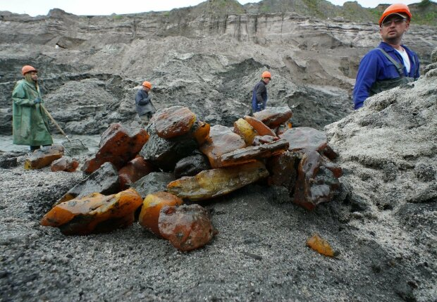 Аваков рассказал о легализации добычи янтаря в Ровенской области