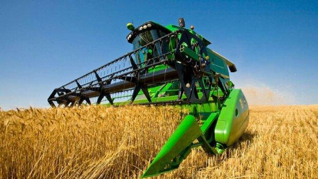 """Эксперты рассказали, почему дорожает пшеница: """"Ожидания не оправдались"""""""
